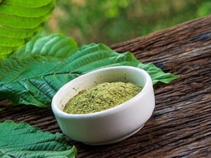 4 of The Best Kratom Vendors Who Sell Organic Kratom