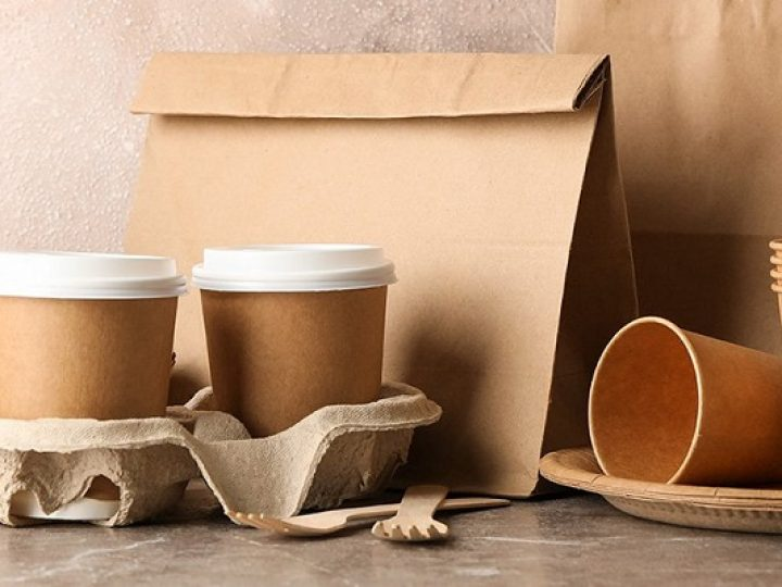 Types of Eco-Friendly Food Packaging