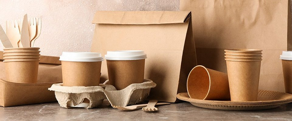 Eco-Friendly Food Packaging