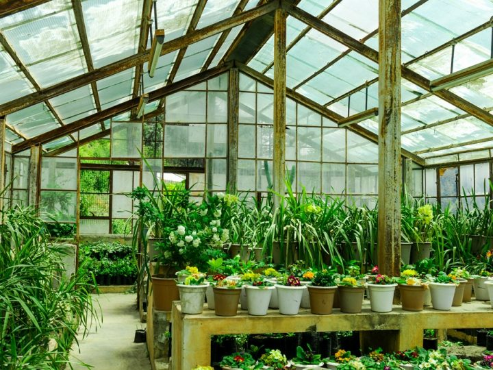 Are greenhouses good or bad for the environment?